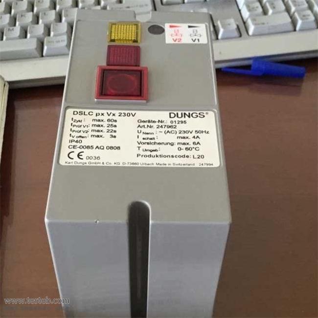 进口品牌火焰检测器DSLC-PXVX-230V