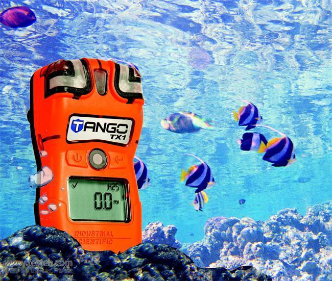 英思科indsci气体检测仪TX1